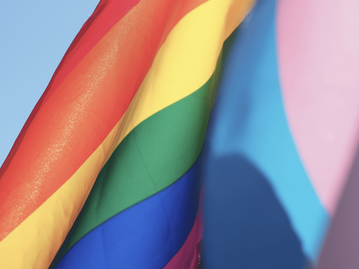 FiveLGBTQ+ founded SaaS companies to support in June and beyond | Vendr